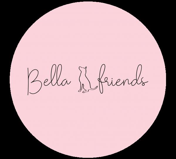 https://bellandfriends.com/wp-content/uploads/2020/08/cropped-logo-rosa-transp-01-4.png